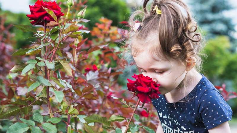 Je suis Hypersensible : comment modifier mon regard sur moi et sur les autres ?
